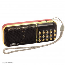 Радиоприемник портативный BKK-851